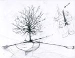 Boat & Tree Series